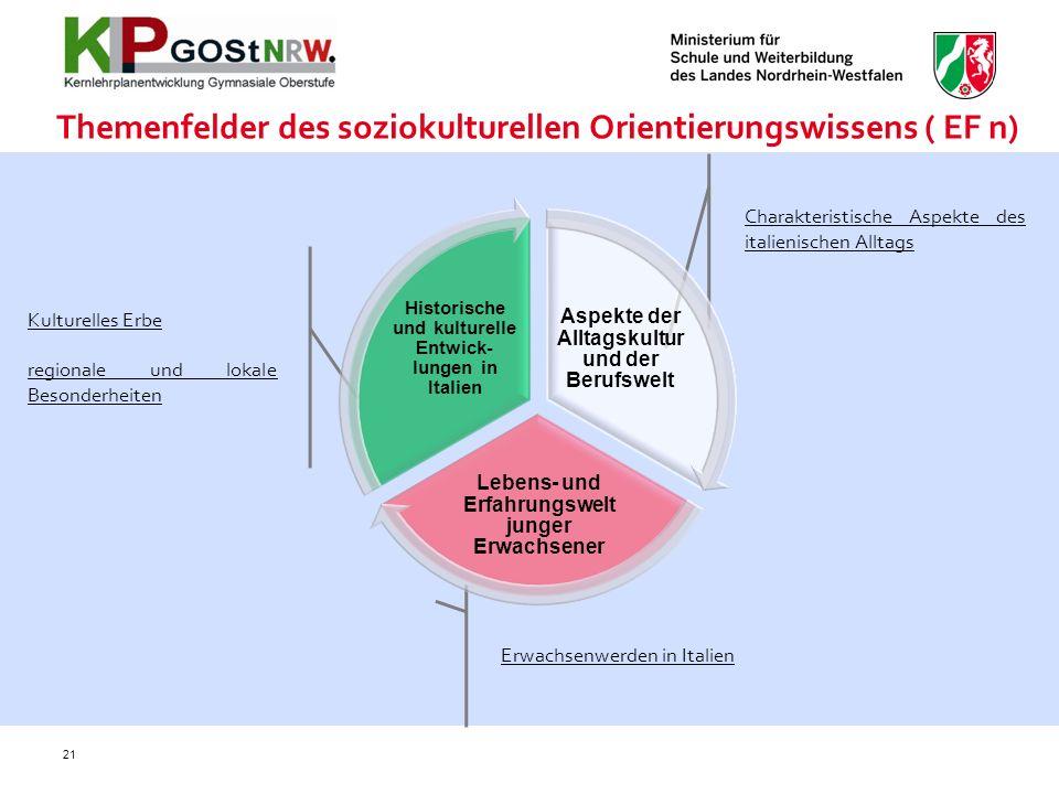 Themenfelder des soziokulturellen Orientierungswissens ( EF n)