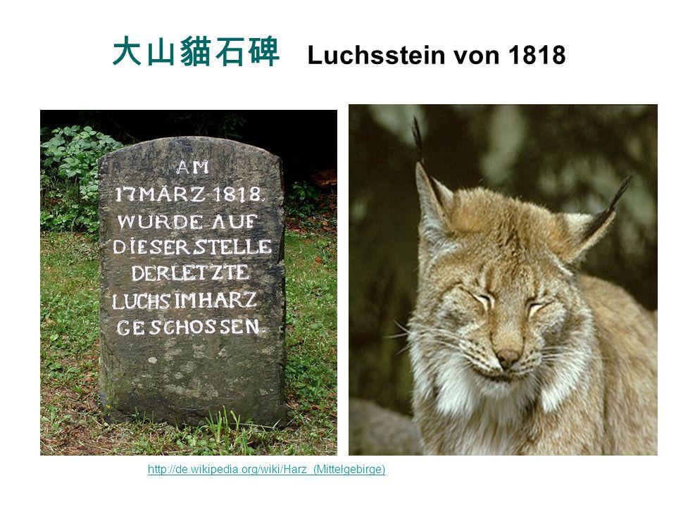 大山貓石碑 Luchsstein von 1818 Luchs wieder ausgewildert