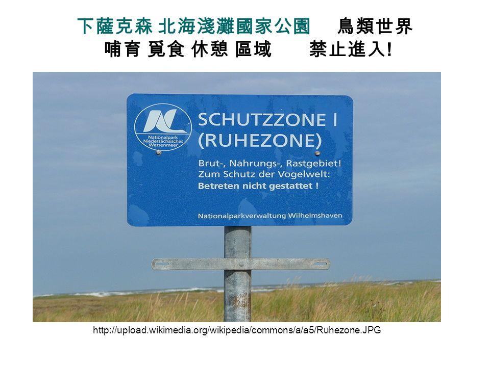 下薩克森 北海淺灘國家公園 鳥類世界 哺育 覓食 休憩 區域 禁止進入!