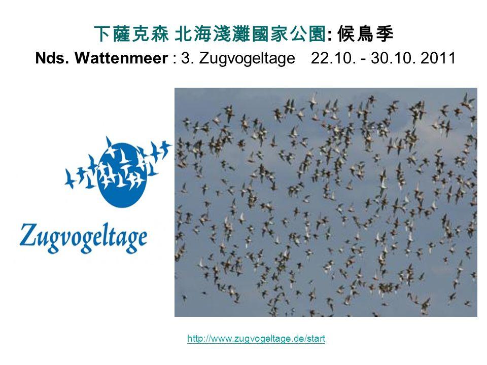 下薩克森 北海淺灘國家公園: 候鳥季 Nds. Wattenmeer : 3. Zugvogeltage 22. 10. - 30. 10