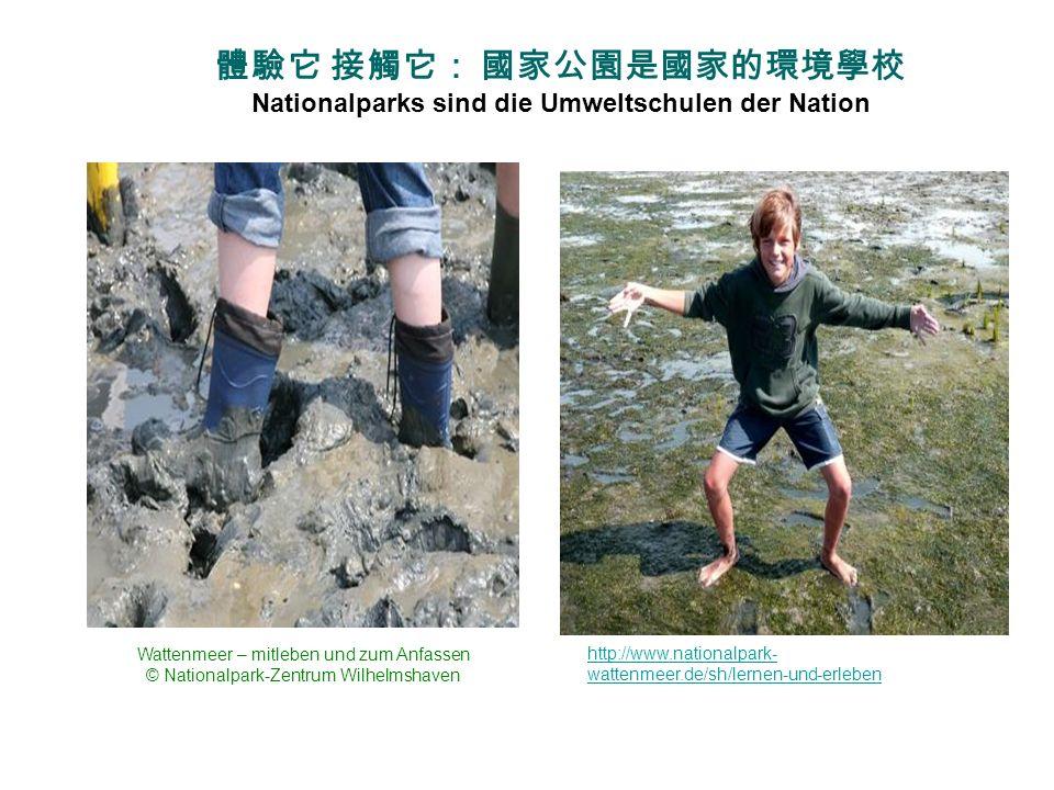 體驗它 接觸它: 國家公園是國家的環境學校Nationalparks sind die Umweltschulen der Nation