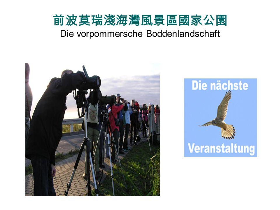 前波莫瑞淺海灣風景區國家公園 Die vorpommersche Boddenlandschaft
