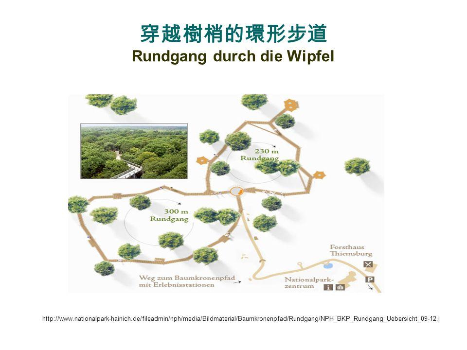 穿越樹梢的環形步道 Rundgang durch die Wipfel