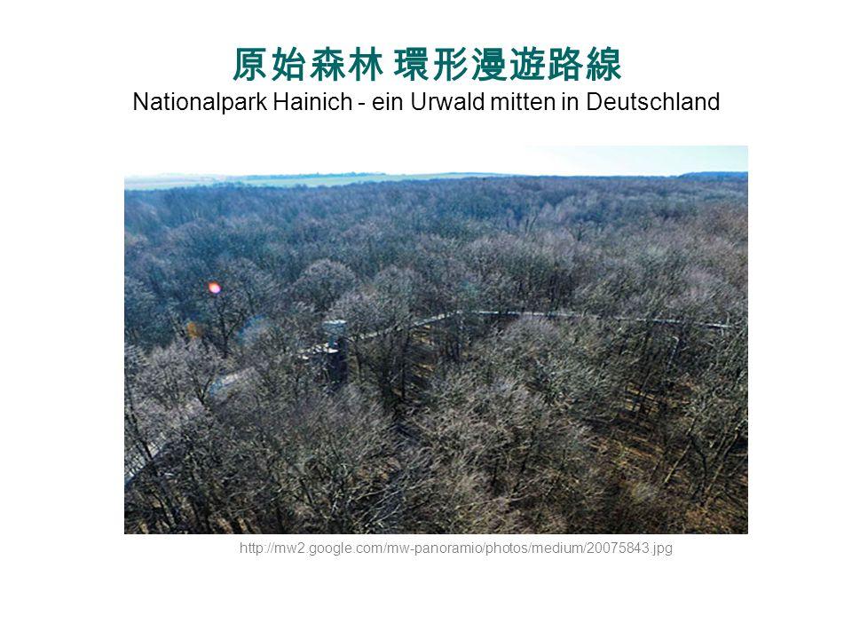 原始森林 環形漫遊路線 Nationalpark Hainich - ein Urwald mitten in Deutschland