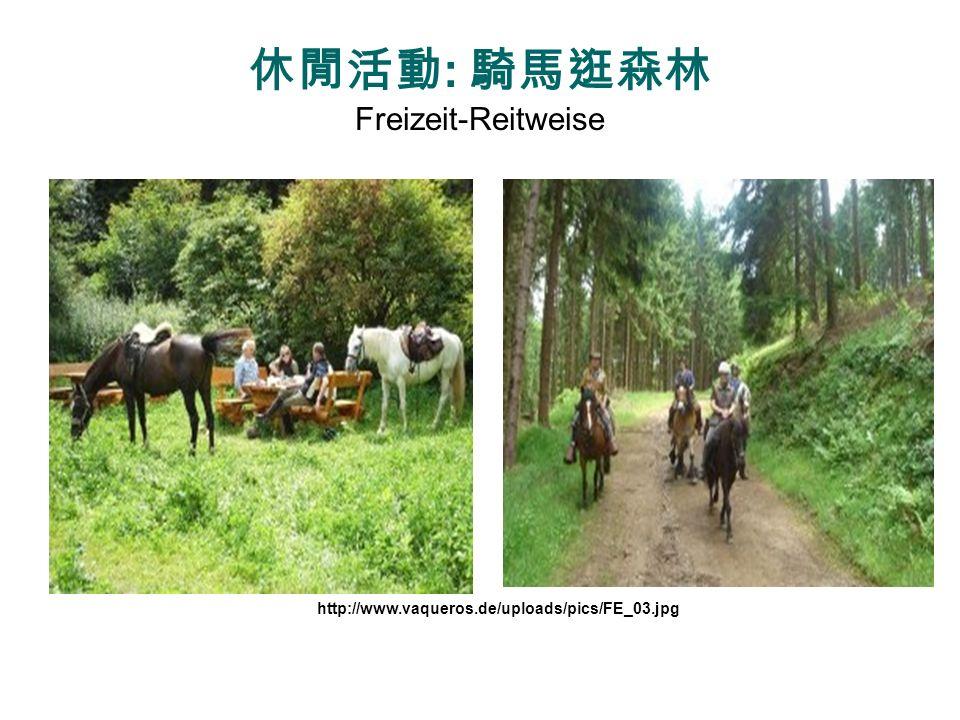 休閒活動: 騎馬逛森林 Freizeit-Reitweise