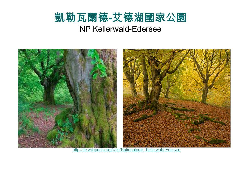 凱勒瓦爾德-艾德湖國家公園 NP Kellerwald-Edersee