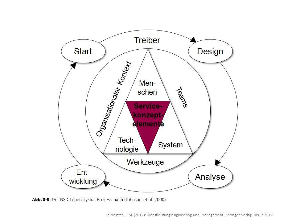 Abb. 3-9: Der NSD Lebenszyklus-Prozess nach (Johnson et al. 2000)