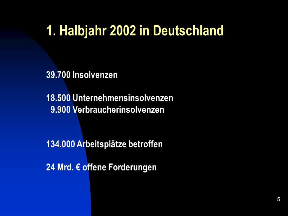 1. Halbjahr 2002 in Deutschland