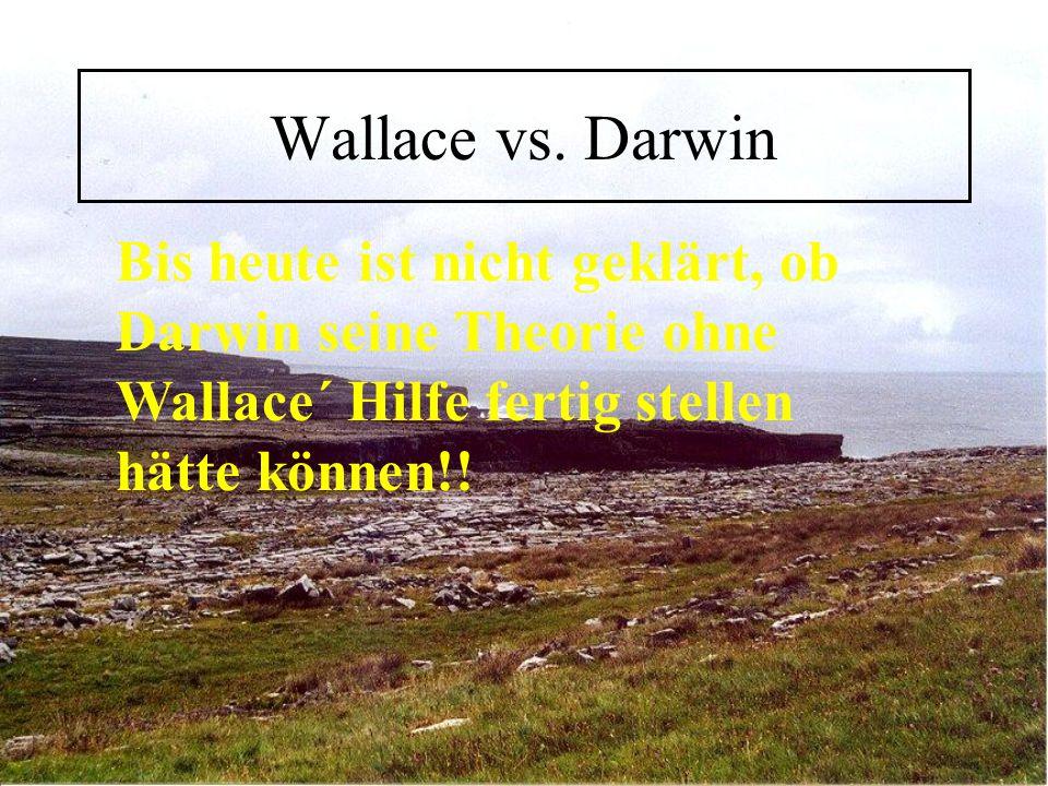 Wallace vs.