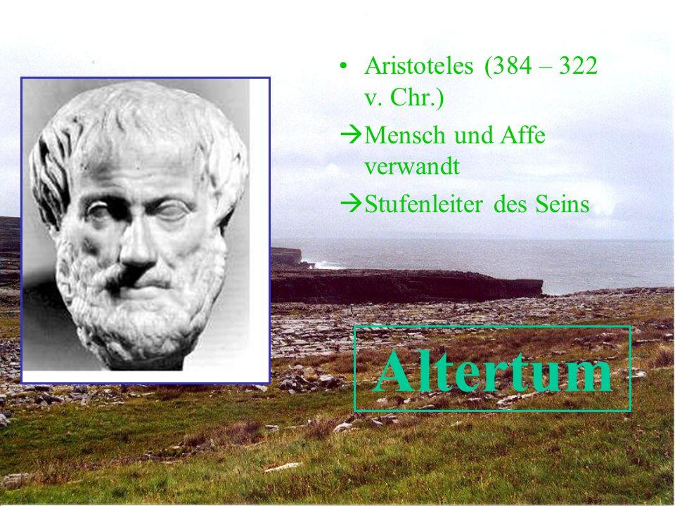 Altertum Aristoteles (384 – 322 v. Chr.) Mensch und Affe verwandt