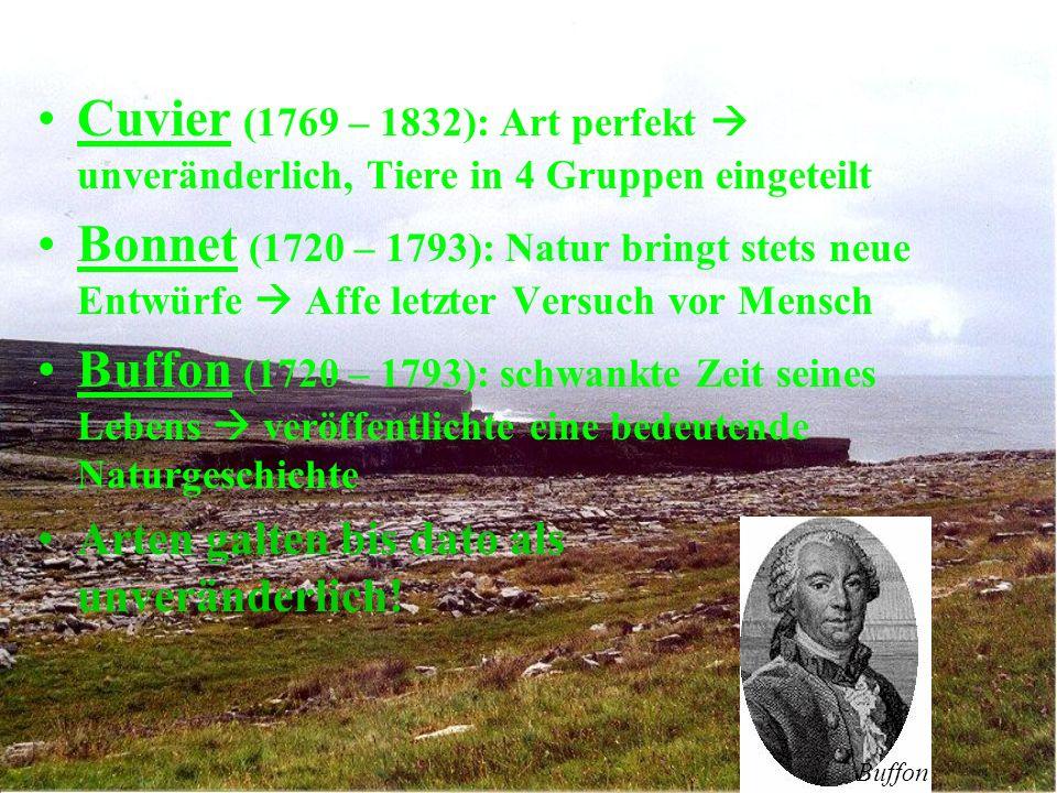 Cuvier (1769 – 1832): Art perfekt  unveränderlich, Tiere in 4 Gruppen eingeteilt