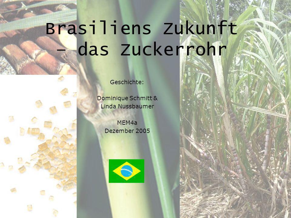 Brasiliens Zukunft – das Zuckerrohr