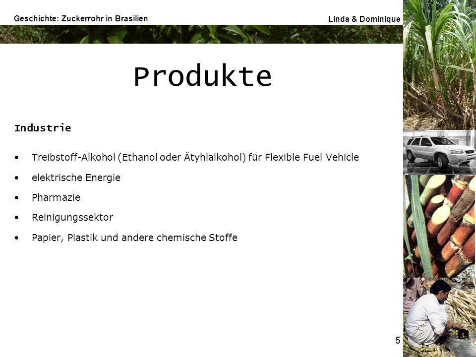 Produkte Industrie. Treibstoff-Alkohol (Ethanol oder Ätyhlalkohol) für Flexible Fuel Vehicle. elektrische Energie.
