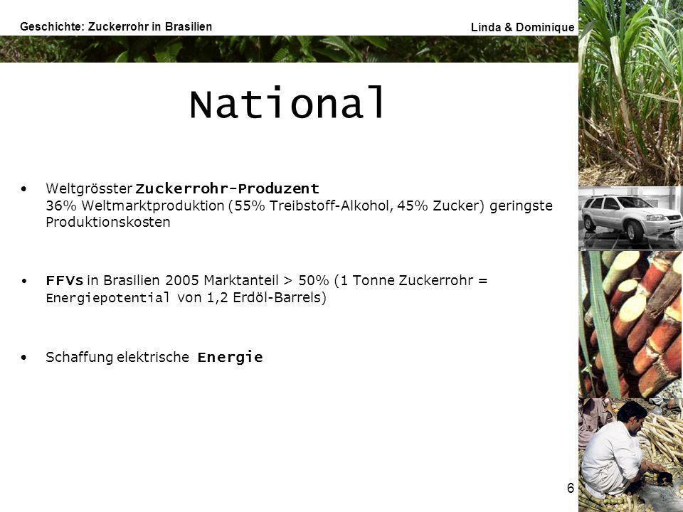 National Weltgrösster Zuckerrohr-Produzent 36% Weltmarktproduktion (55% Treibstoff-Alkohol, 45% Zucker) geringste Produktionskosten.