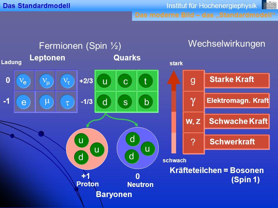 g Wechselwirkungen Fermionen (Spin ½) ne nm nt u c t m e t d s b d u