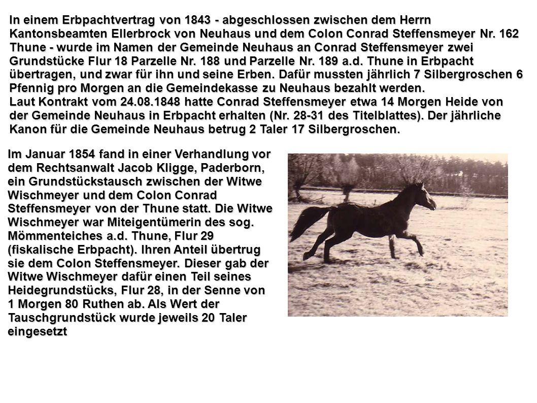 In einem Erbpachtvertrag von 1843 - abgeschlossen zwischen dem Herrn Kantonsbeamten Ellerbrock von Neuhaus und dem Colon Conrad Steffensmeyer Nr. 162 Thune - wurde im Namen der Gemeinde Neuhaus an Conrad Steffensmeyer zwei Grundstücke Flur 18 Parzelle Nr. 188 und Parzelle Nr. 189 a.d. Thune in Erbpacht übertragen, und zwar für ihn und seine Erben. Dafür mussten jährlich 7 Silbergroschen 6 Pfennig pro Morgen an die Gemeindekasse zu Neuhaus bezahlt werden.
