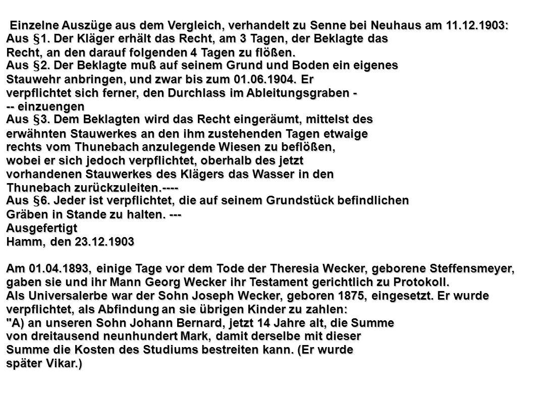 Einzelne Auszüge aus dem Vergleich, verhandelt zu Senne bei Neuhaus am 11.12.1903: