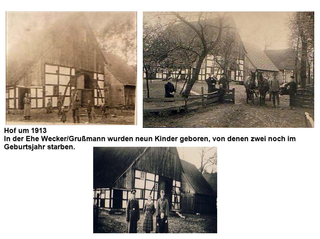 Hof um 1913 In der Ehe Wecker/Grußmann wurden neun Kinder geboren, von denen zwei noch im Geburtsjahr starben.