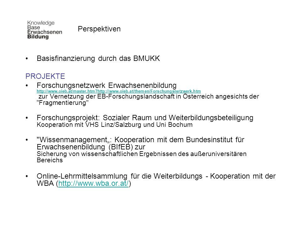 Perspektiven Basisfinanzierung durch das BMUKK. PROJEKTE.