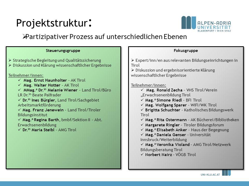 Projektstruktur: Partizipativer Prozess auf unterschiedlichen Ebenen