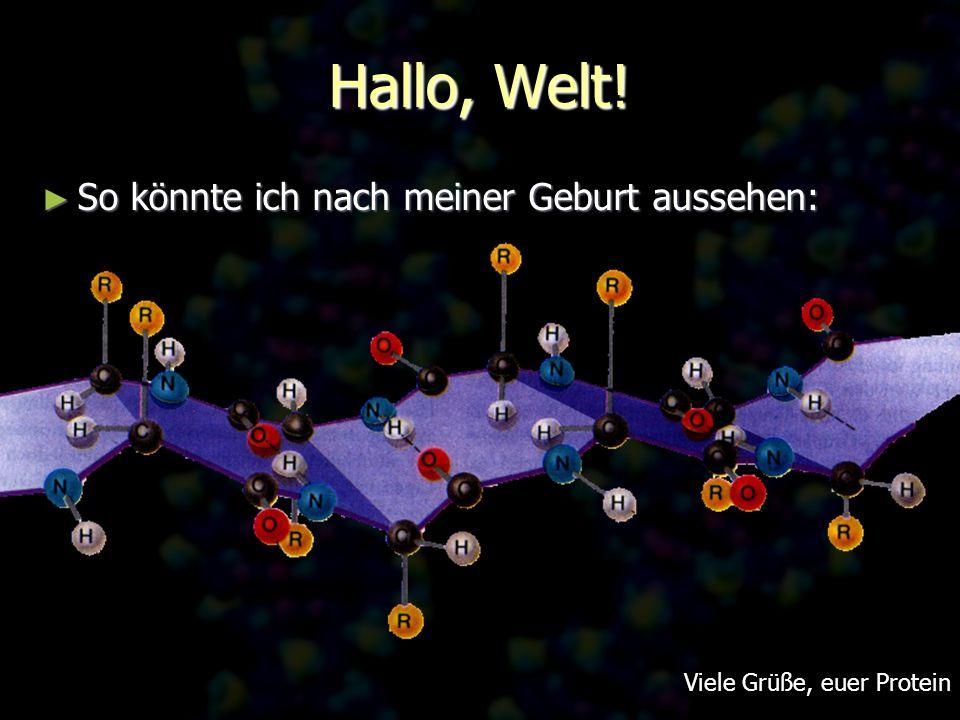 Hallo, Welt! So könnte ich nach meiner Geburt aussehen: