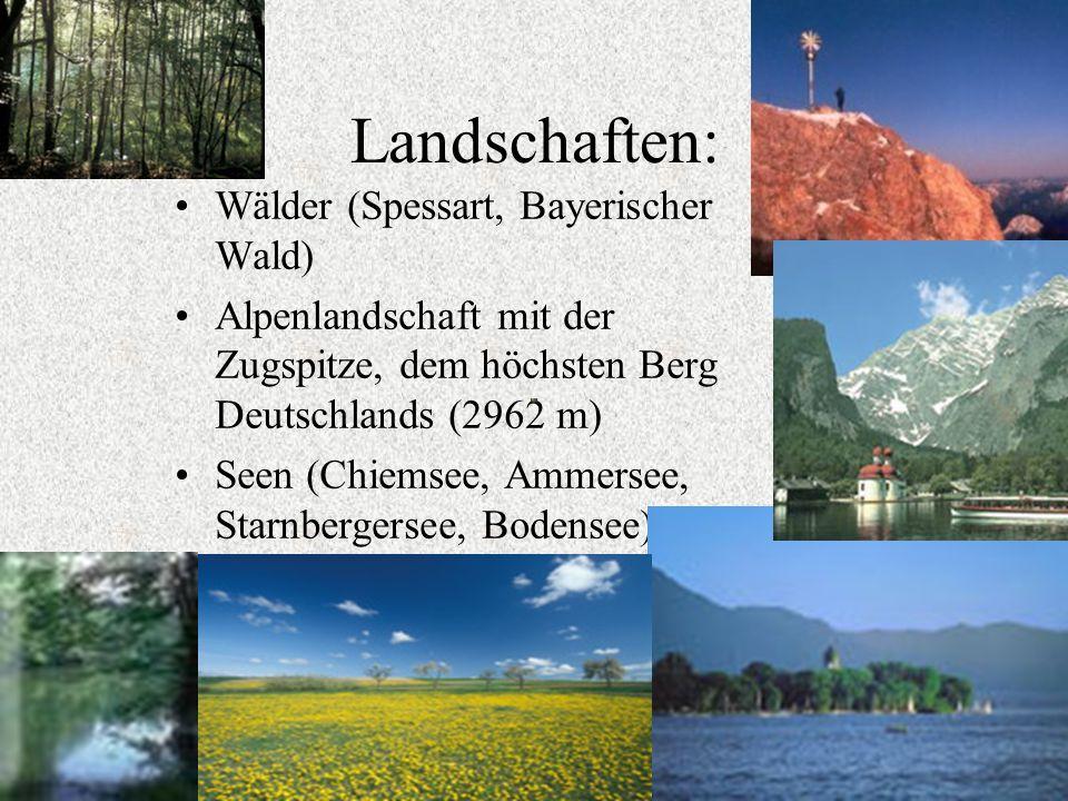 Landschaften: Wälder (Spessart, Bayerischer Wald)