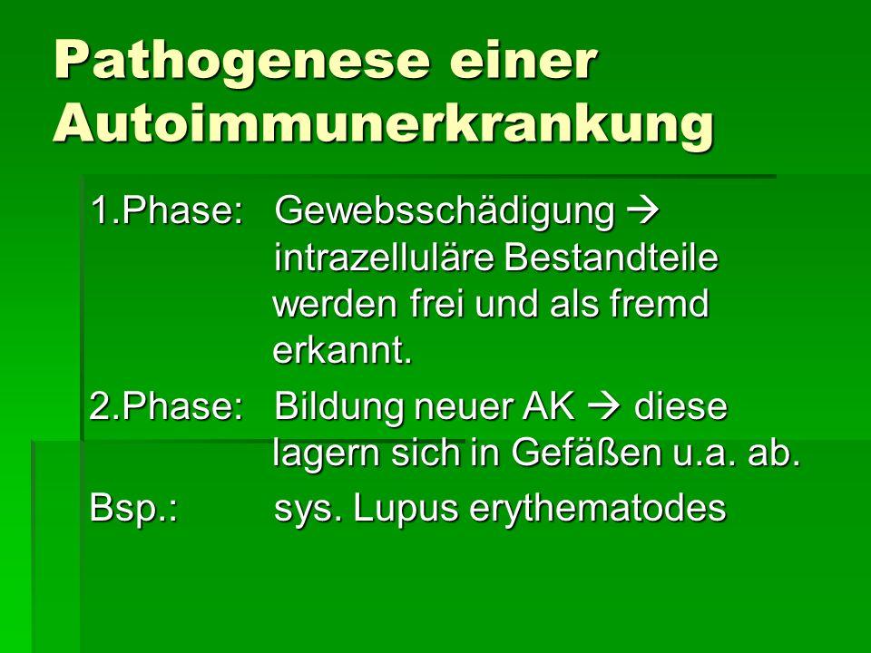Pathogenese einer Autoimmunerkrankung