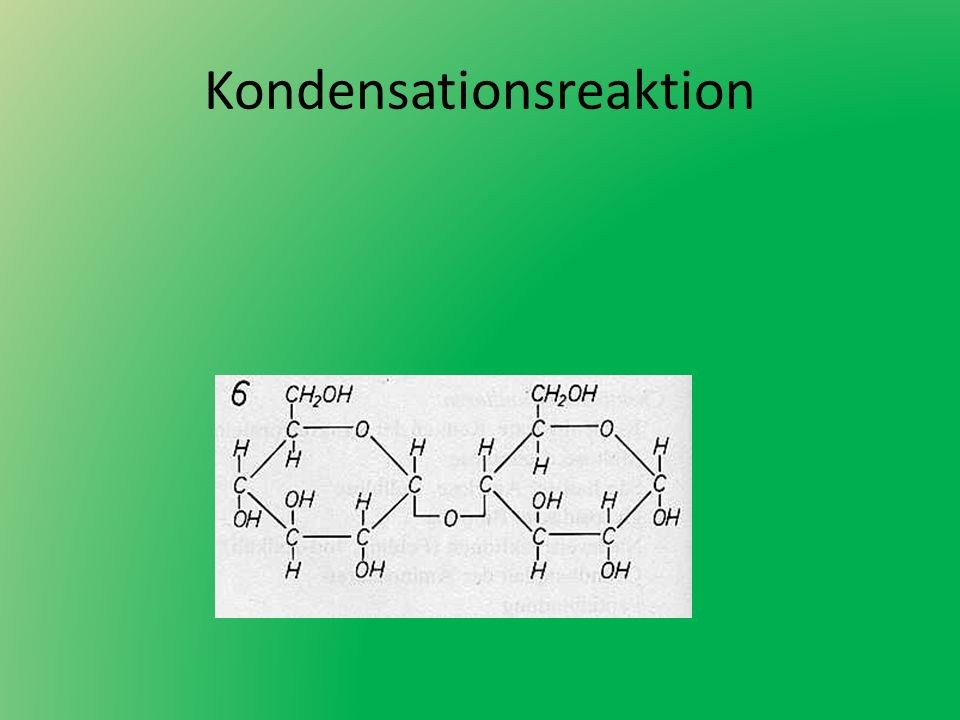 Kondensationsreaktion