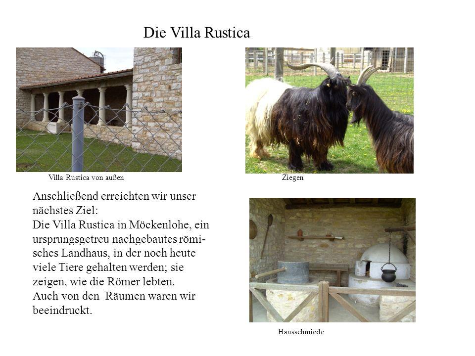 Die Villa Rustica Villa Rustica von außen. Ziegen.