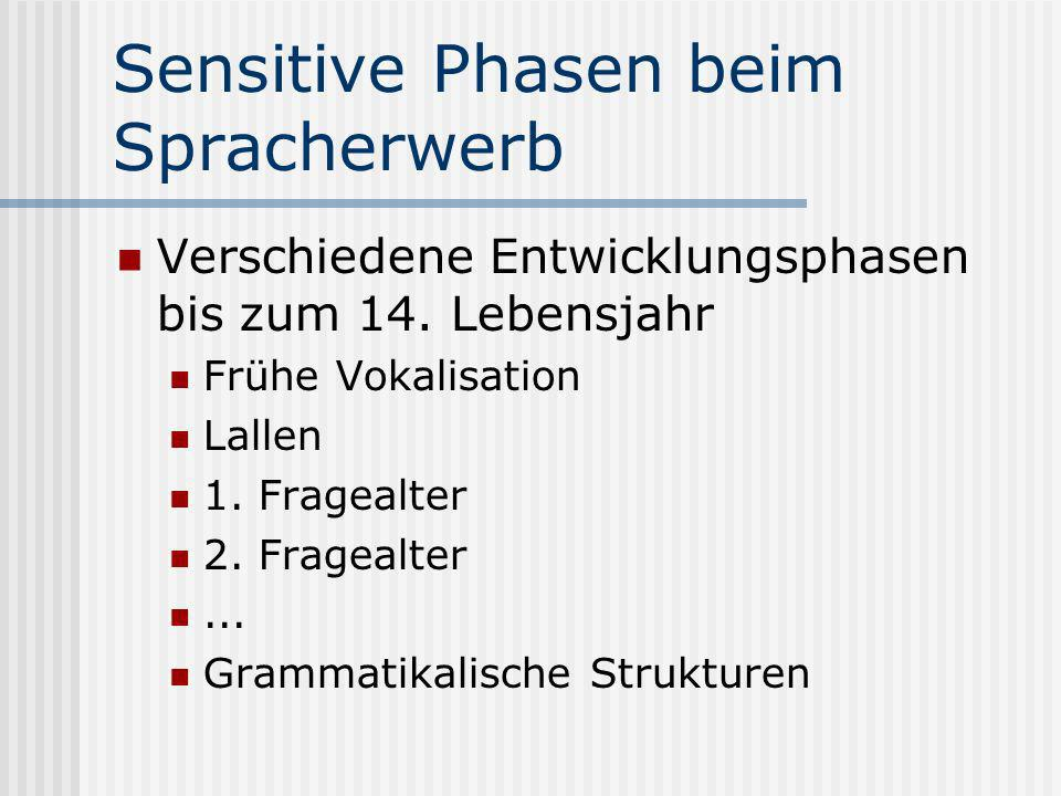 Sensitive Phasen beim Spracherwerb