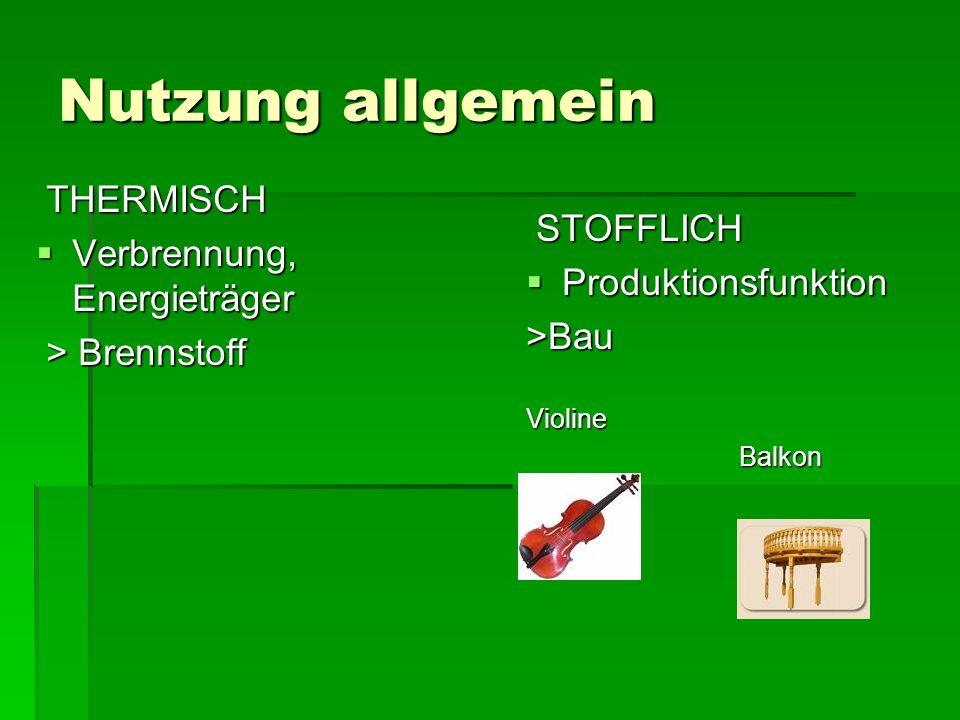 Nutzung allgemein THERMISCH Verbrennung, Energieträger STOFFLICH