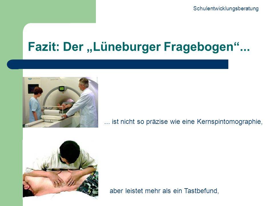 "Fazit: Der ""Lüneburger Fragebogen ..."