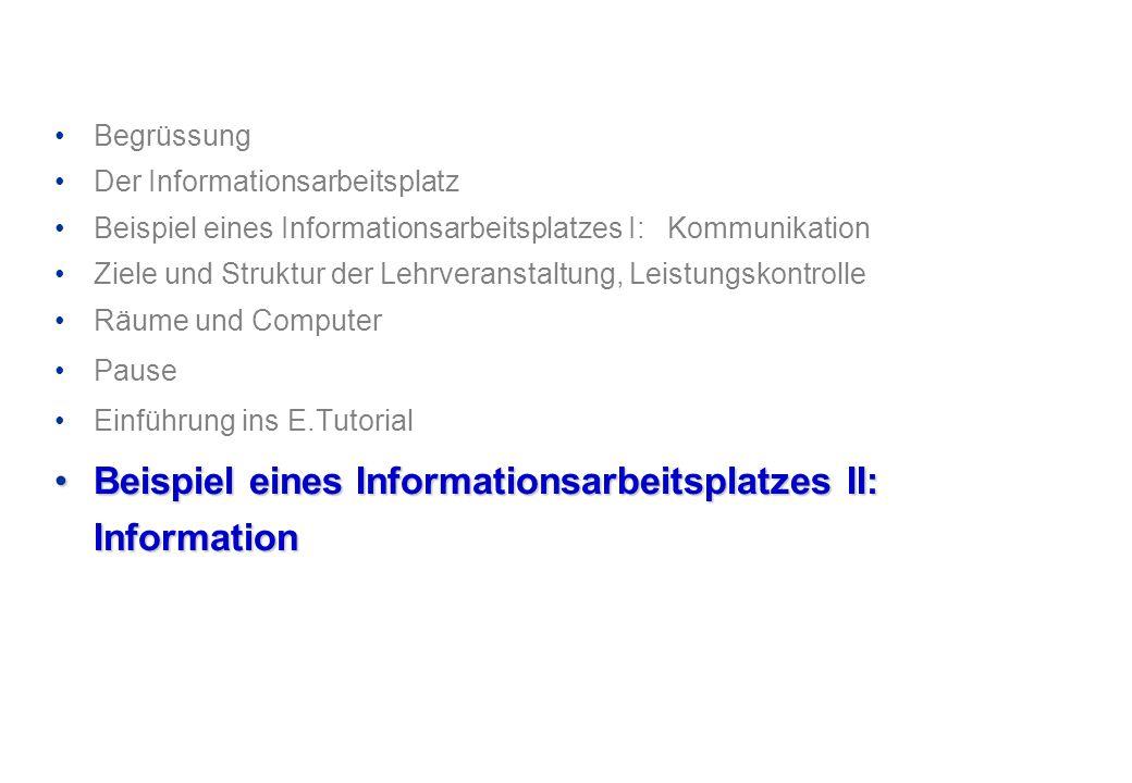 Beispiel eines Informationsarbeitsplatzes II: Information