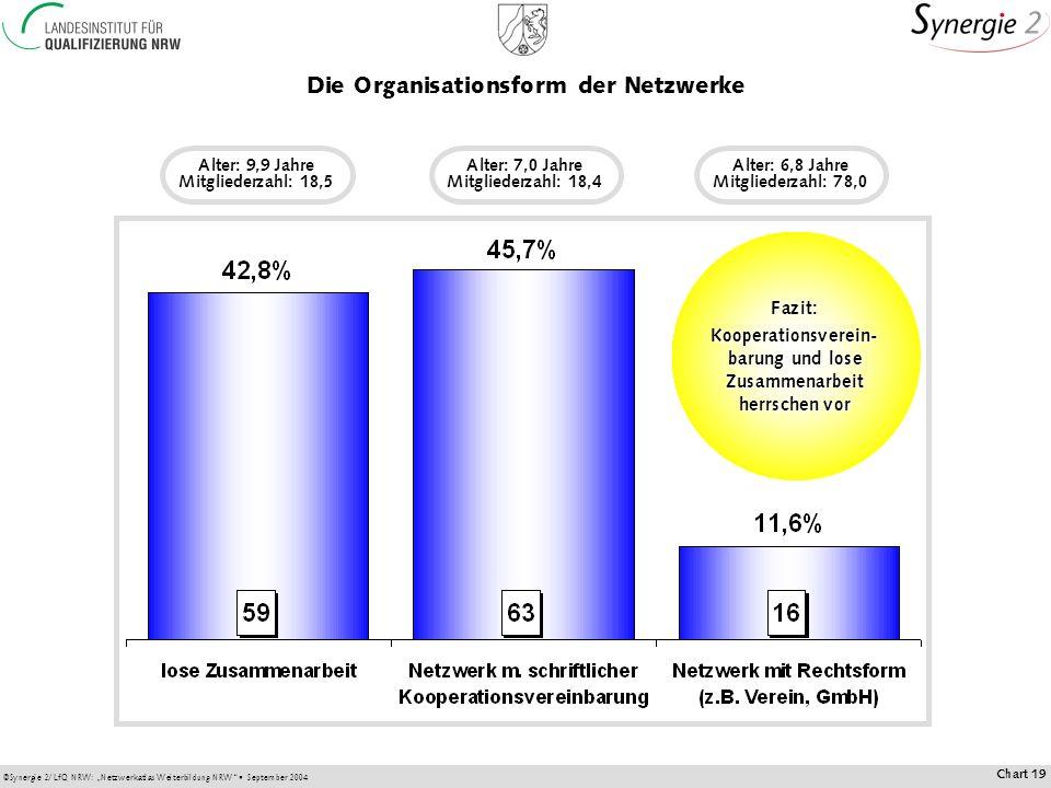 Die Organisationsform der Netzwerke