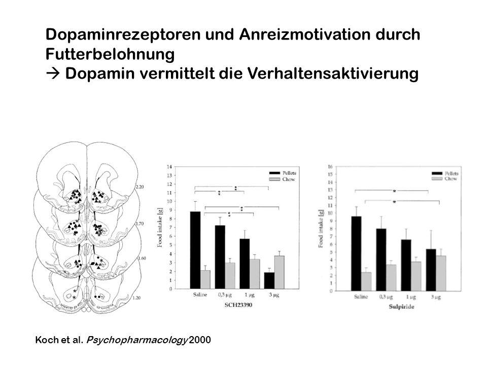 Koch et al. Psychopharmacology 2000