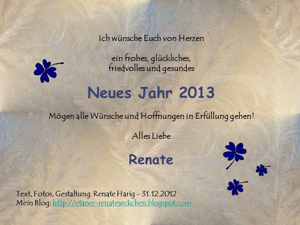 Ich wünsche Euch von Herzen ein frohes, glückliches, friedvolles und gesundes Neues Jahr 2013 Mögen alle Wünsche und Hoffnungen in Erfüllung gehen! Alles Liebe Renate