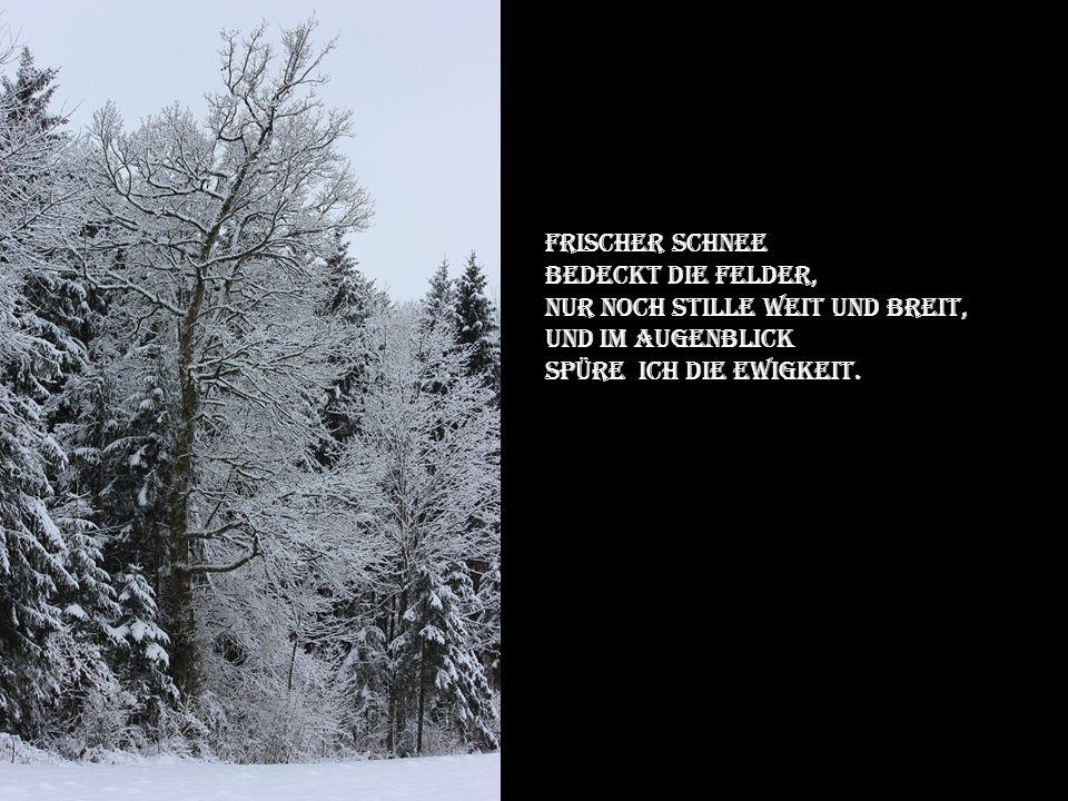Frischer Schnee Bedeckt die felder, Nur noch stille weit und breit, Und im augenblick.