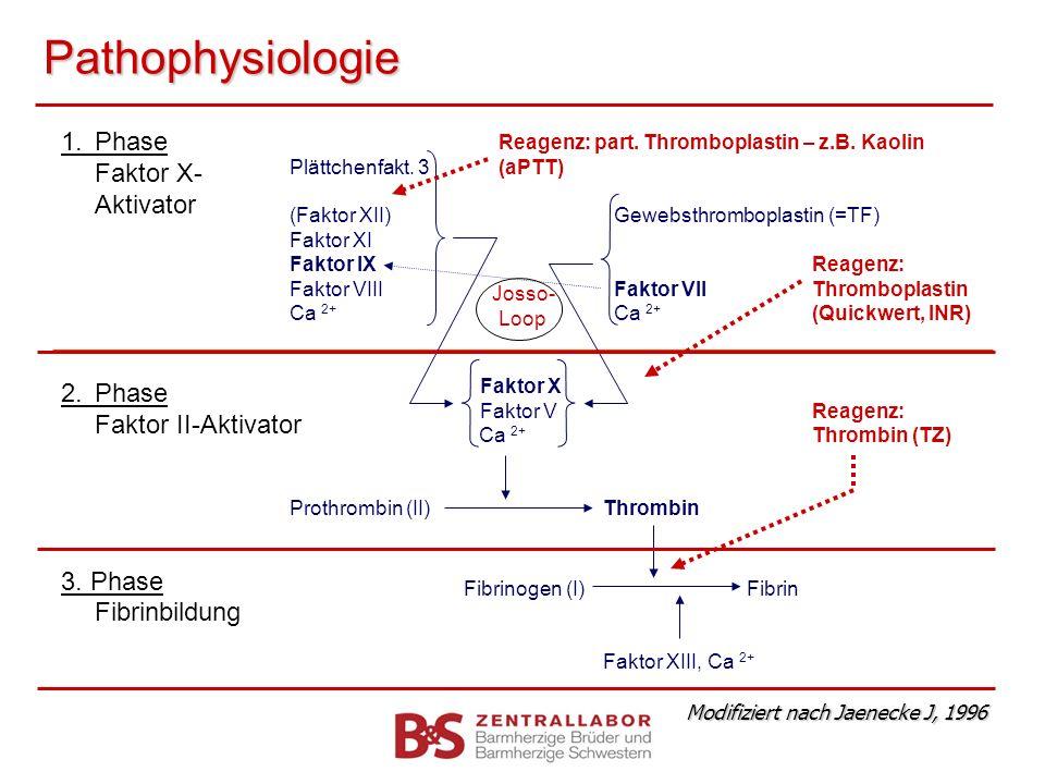 Pathophysiologie 1. Phase Faktor X- Aktivator 2. Phase