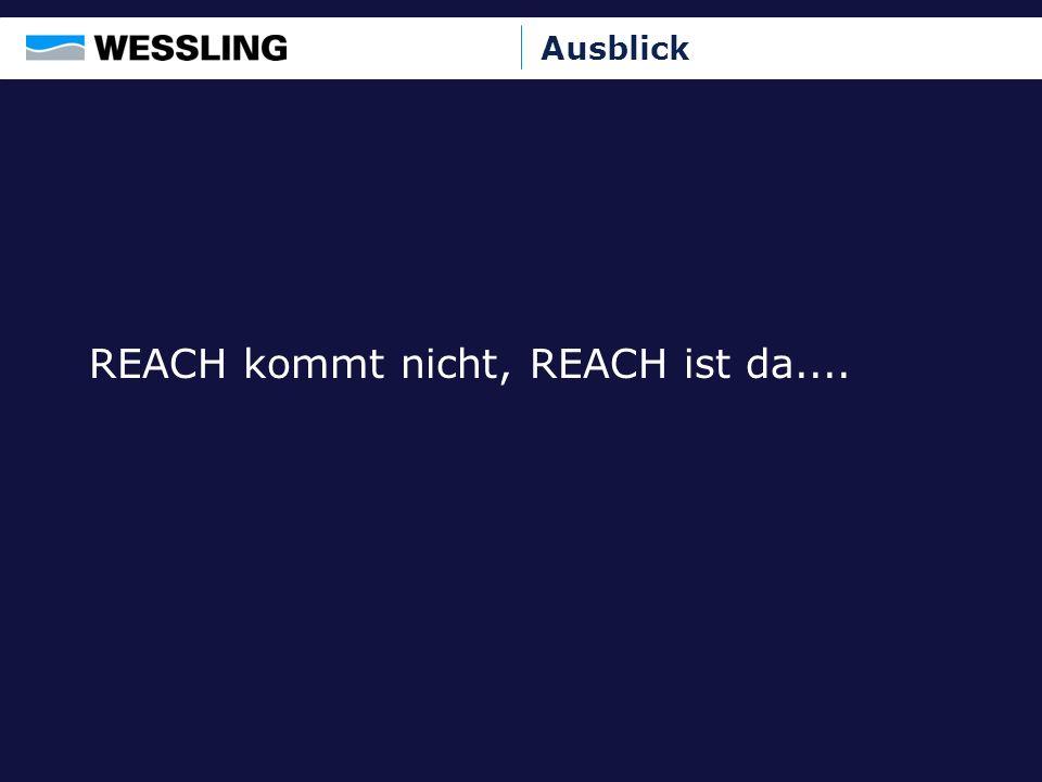 REACH kommt nicht, REACH ist da....