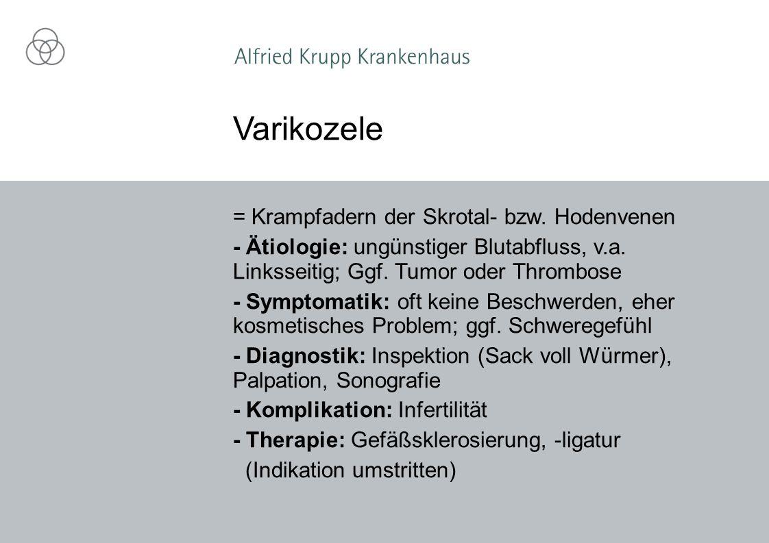 Varikozele = Krampfadern der Skrotal- bzw. Hodenvenen