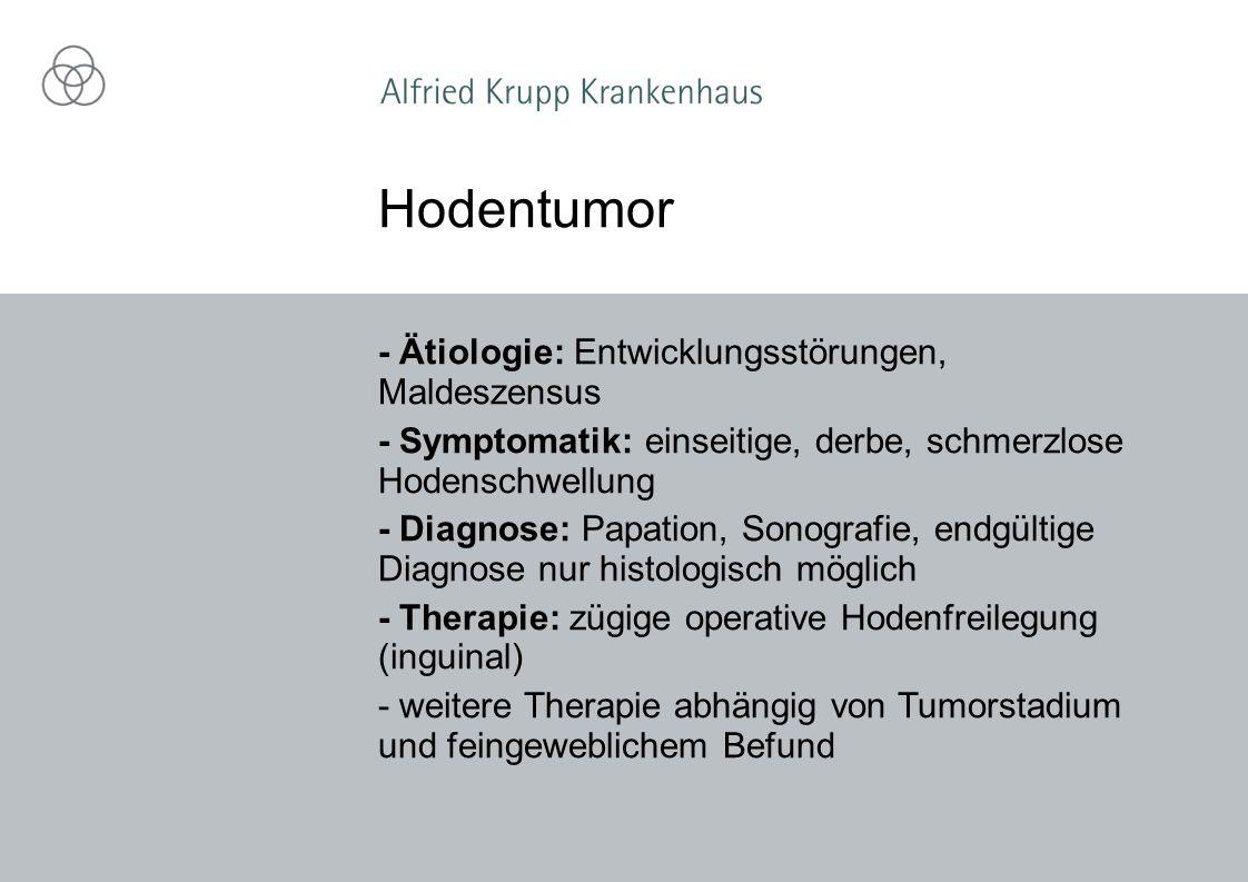 Hodentumor - Ätiologie: Entwicklungsstörungen, Maldeszensus