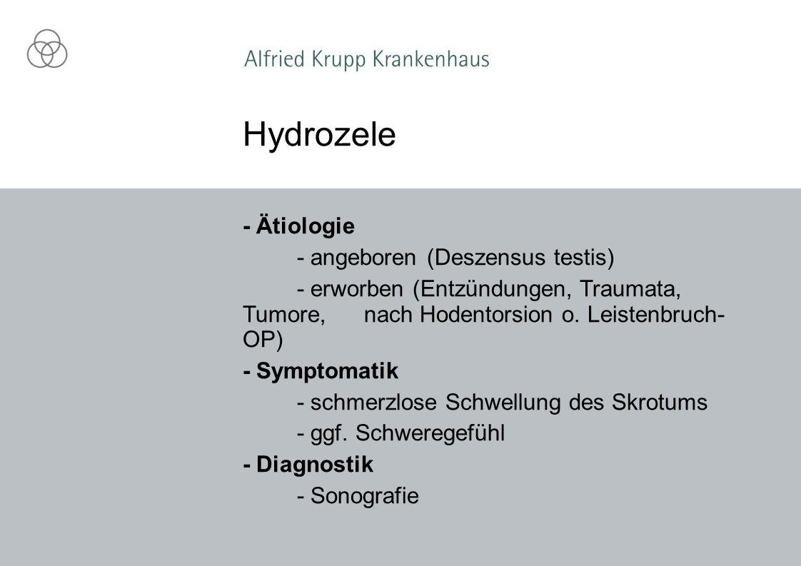 Hydrozele - Ätiologie - angeboren (Deszensus testis)