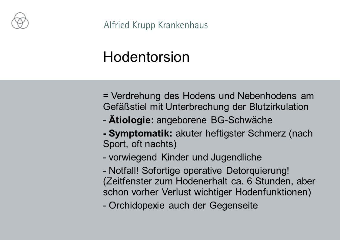 Hodentorsion = Verdrehung des Hodens und Nebenhodens am Gefäßstiel mit Unterbrechung der Blutzirkulation.