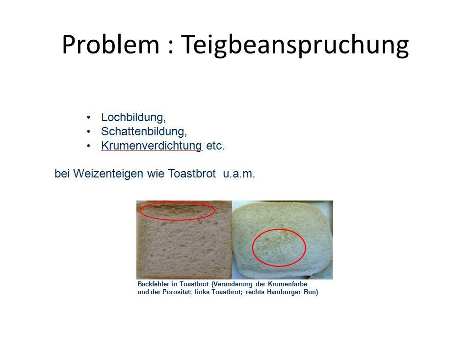 Problem : Teigbeanspruchung