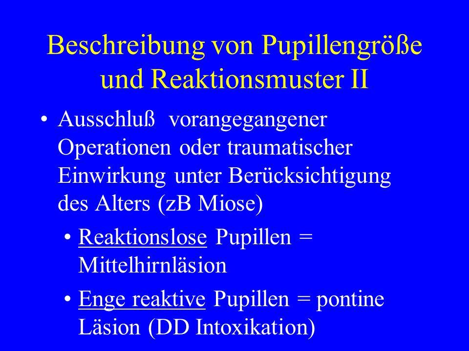 Beschreibung von Pupillengröße und Reaktionsmuster II