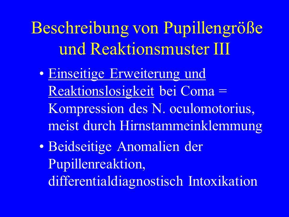 Beschreibung von Pupillengröße und Reaktionsmuster III