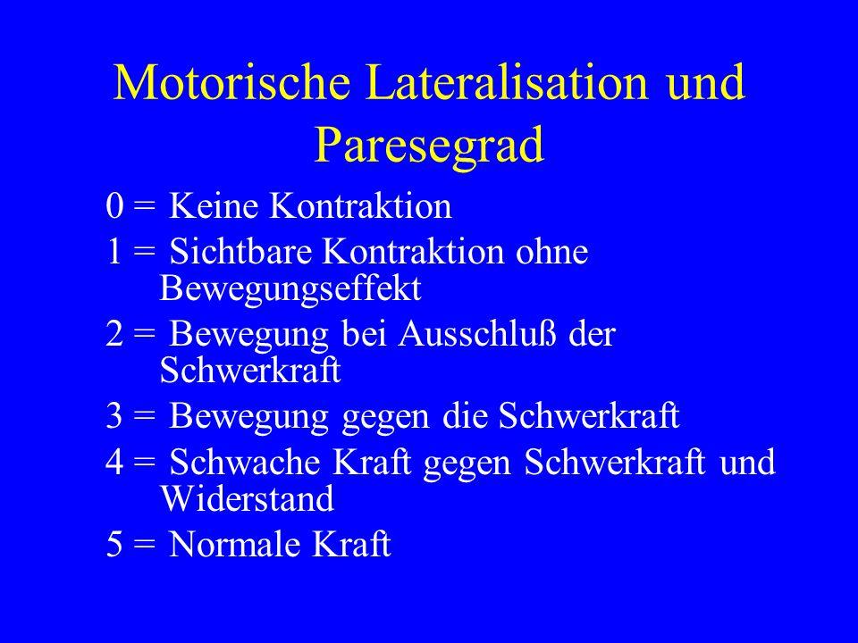 Motorische Lateralisation und Paresegrad