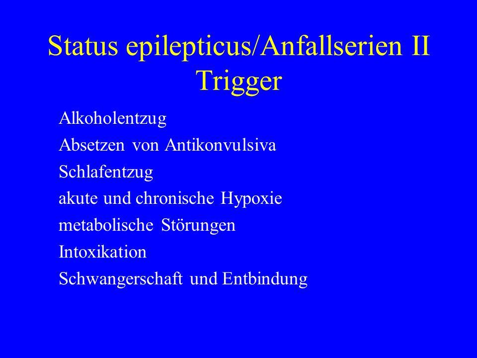 Status epilepticus/Anfallserien II Trigger