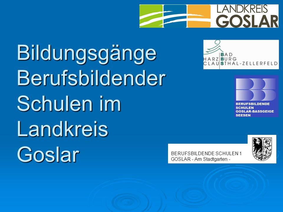 Bildungsgänge Berufsbildender Schulen im Landkreis Goslar