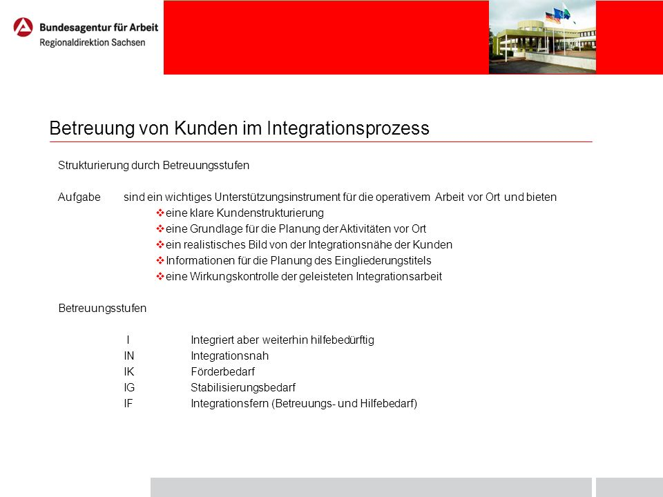 Integrationsprozess – schematische Darstellung